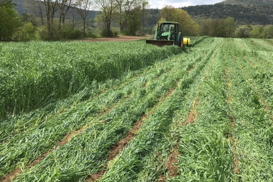 No Till Corn Planter Retrofits And Rentals New Hampshire Soil